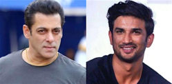 Salman Khan requests his Fans to stand with Sushant's Fans