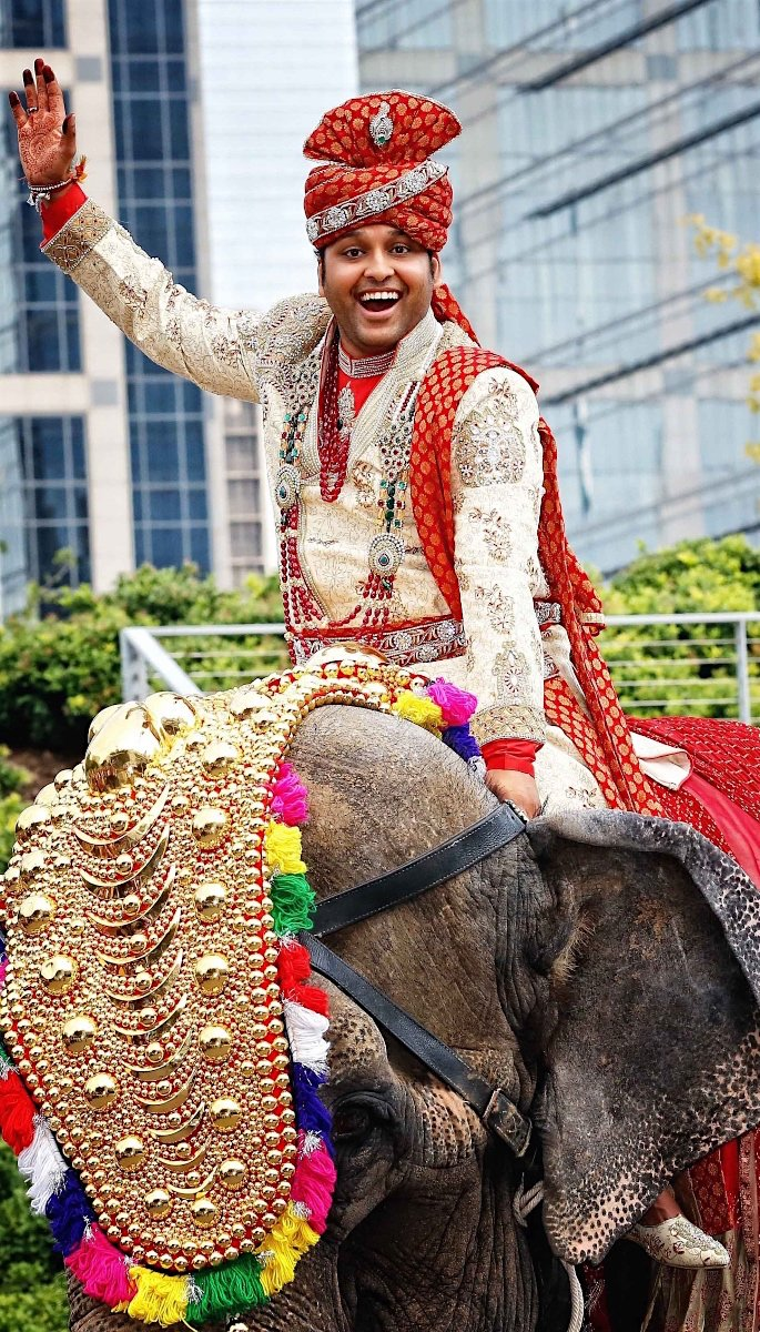 20 Amazing Photos of Desi Grooms - elephant