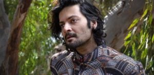 Ali Fazal says 'Indian cinema is not all Bollywood' f