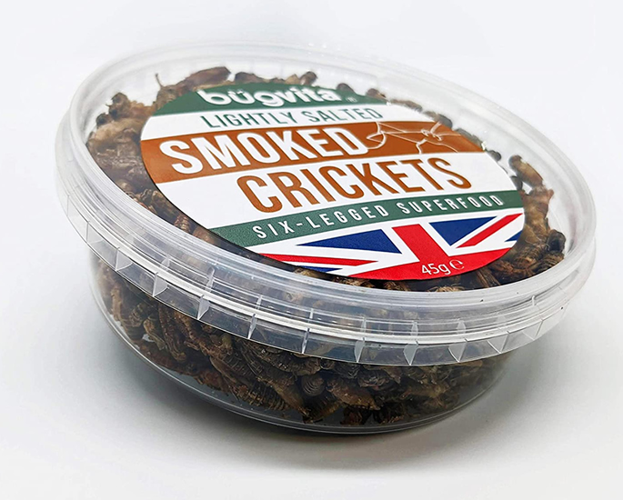 Edible Insects which You Can Buy and Eat - bugvita