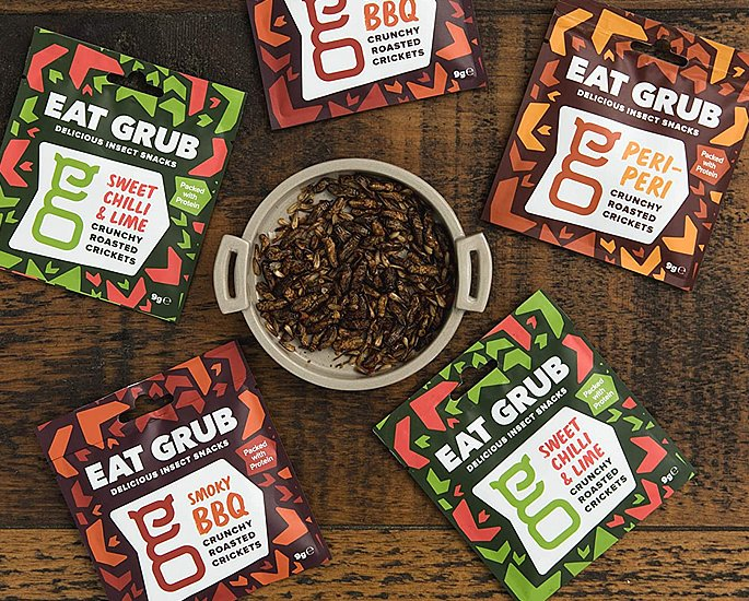 Edible Insects which You Can Buy and Eat - eat grub