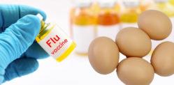 کیا این ایچ ایس فلو جبس اور ویکسین انڈے سے بنی ہیں؟