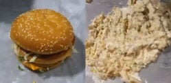 Pakistani Man makes McDonald's Chicken Burger Ice Cream