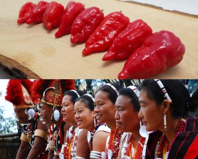 Qual è il peperoncino più piccante trovato in India - Origini e storia
