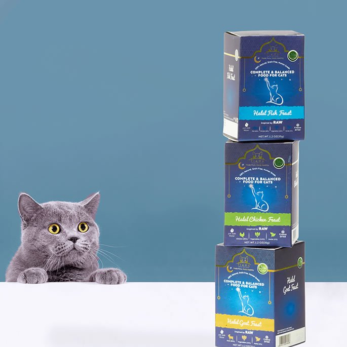 Businessman launches World's 1st Halal Cat Food